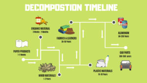 This is the junk cars decomposition timeline